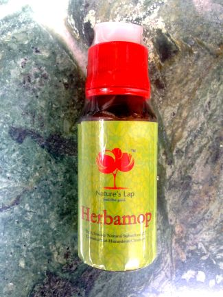 8 All Natural Mosquito Repellents