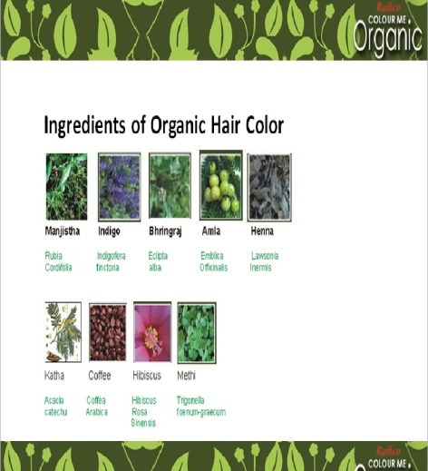 Radico-Colour-Me-Soft-Black-Organic-Hair-Colour-100gms-RO1-1361795102NsgSEz