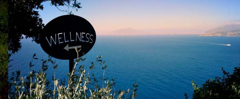 wellness-h